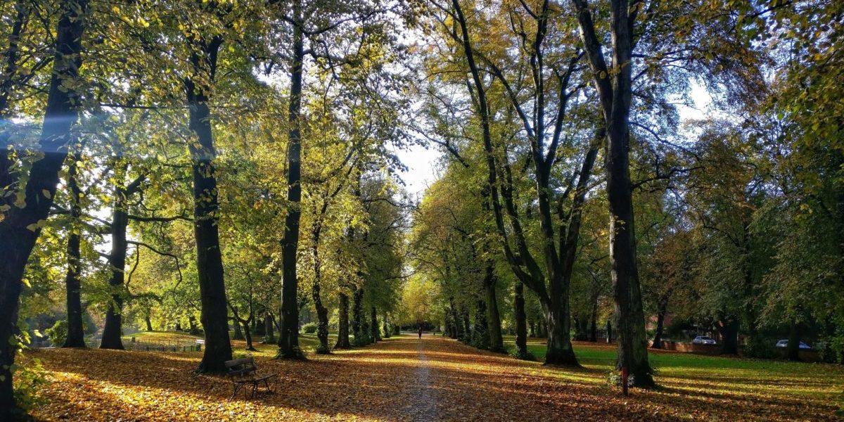 Bloxham School run half marathon in aid of Oxfordshire Mind